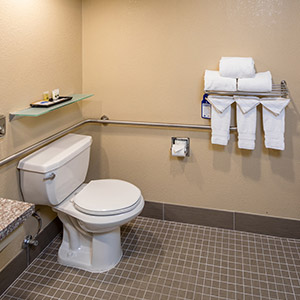 Best Western Plus Airport Inn & Suites Oakland Hotel Amenities